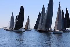 Sandhamn Open Shorthanded