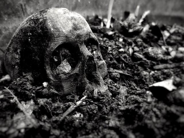 Garden skull b+w