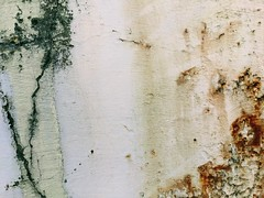 rusting remnant