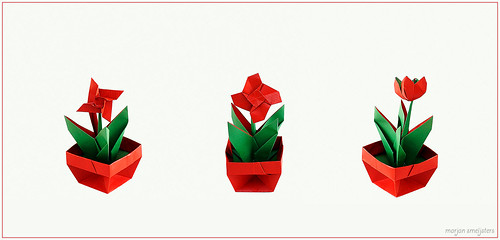 Origami Potted Plant (Max Hulme)
