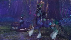 Peacock Day at Bard Circle