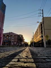 Waking Up on Scott St