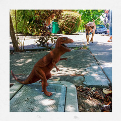 T-Rex, prepare to meet Willow the dog!