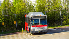 WMATA Metrobus 2006 Orion VII CNG #3032