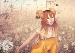 Honey Bee Horns - coming soon to Shiny Shabby :)