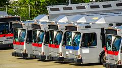 Retired WMATA Metrobuses