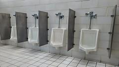 Men's restroom at Mason Dixon Welcome Center [01]