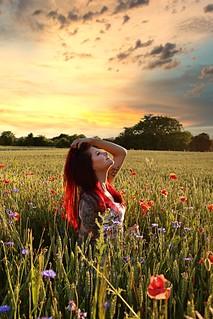 Portrait in poppy field