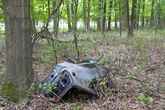 Abandoned Car, Clay Pit Ponds State Park