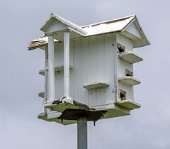 Neoclassical Birdhouse, Prince's Bay