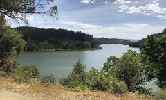 #MyFriend went on a #hike at #LakeChabot in the #EastBay and sent me #pictures ❤️