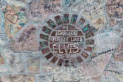 darlene-perez-loves-elvis_49929496216_o