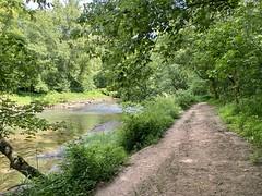 Hemlock Grove trail run