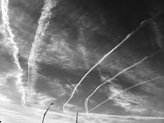 Sky Claws