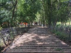 2021 Bike 180: Day 62 - Wooden Road