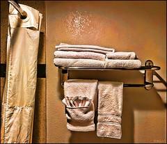 Towel Watcher