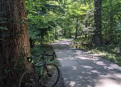 2021 Bike 180: Day 63 - Dappled