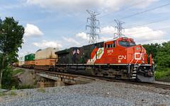 CN Train Z195 DPU