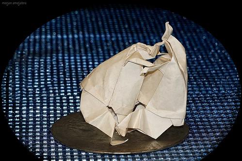 Origami Sumo Wrestling