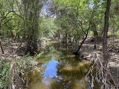Olmos Basin, post-flood
