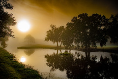 Misty Morning - Explored