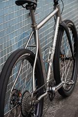 *SEVEN CYCLES* evergreen SL