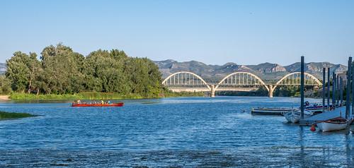 Reman al riu Ebre