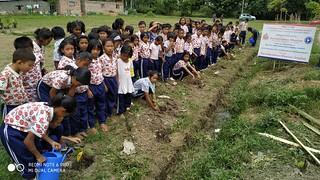 07-Tree Plantation