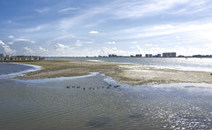 Saint Joseph Sound in Clearwater, Florida