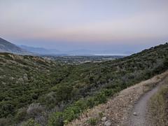 Hog's Hollow trail [Explore 23 July 2021]