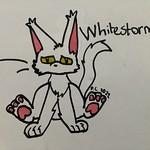 Whitestorm by Sunny Cat