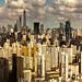 Panoramic Shanghai