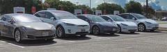Tesla Model Line