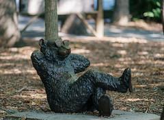 Relaxin' Bear