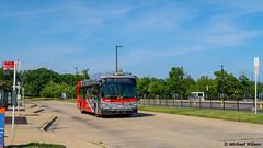 WMATA Metrobus 2021 New Flyer Xcelsior XD40 #4508