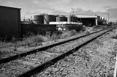 watsonvile_railtrail_M1001641