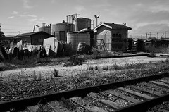 watsonvile_railtrail_M1001631