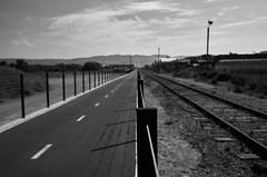 watsonvile_railtrail_M1001620