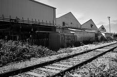 watsonvile_railtrail_M1001643