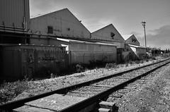 watsonvile_railtrail_M1001645
