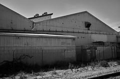 watsonvile_railtrail_M1001646