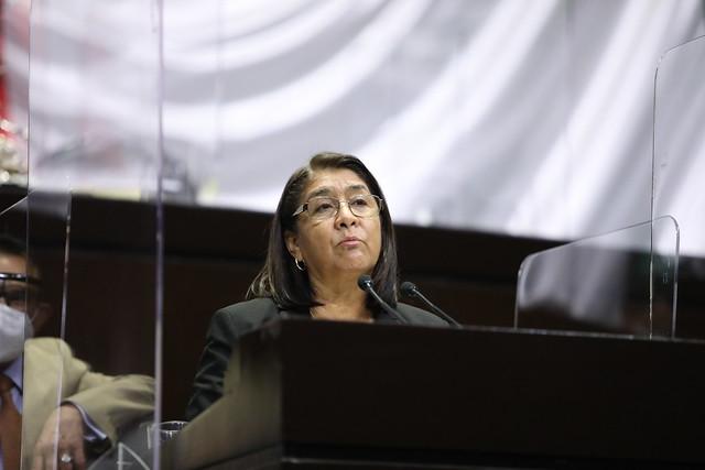 28/04/2021 Tribuna Dip. Miroslava Sánchez Galván