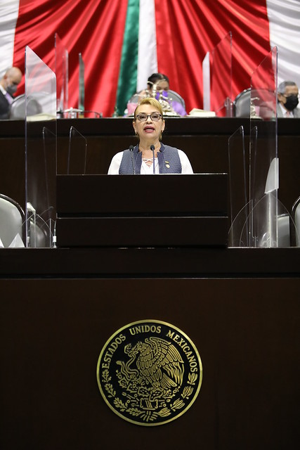 29/04/2021 Tribuna Dip. Lucia Flores Olivo