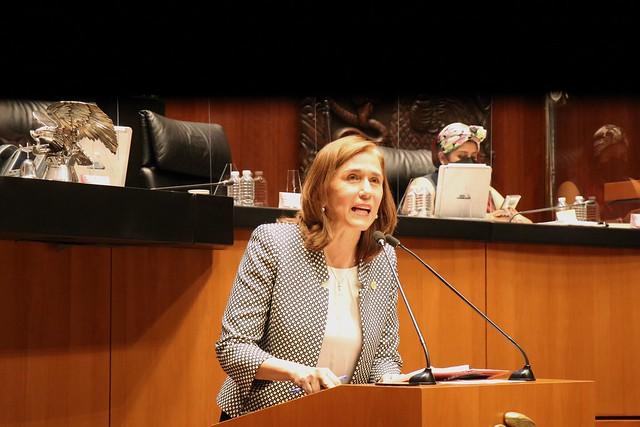 27/07/2021 Tribuna Diputada Carmen Almeida Sesión Permanente Senado De La República
