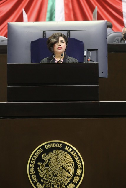 30/07/2021 Tribuna Diputada Anita Sánchez Castro
