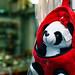 Panda in a Bag