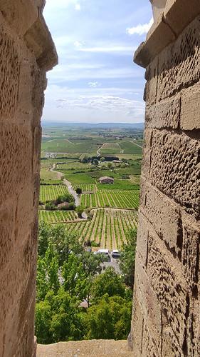 Laguardia, viñedos