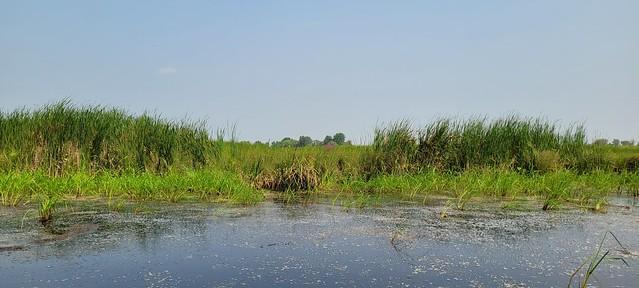 Photo:Exploring the Poygan State Wildlife Area By WinnebagoWaterways
