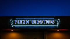 Flesh Electric