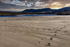 Carmel River Beach Footprints